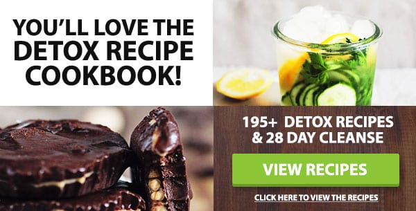 detox recipe book