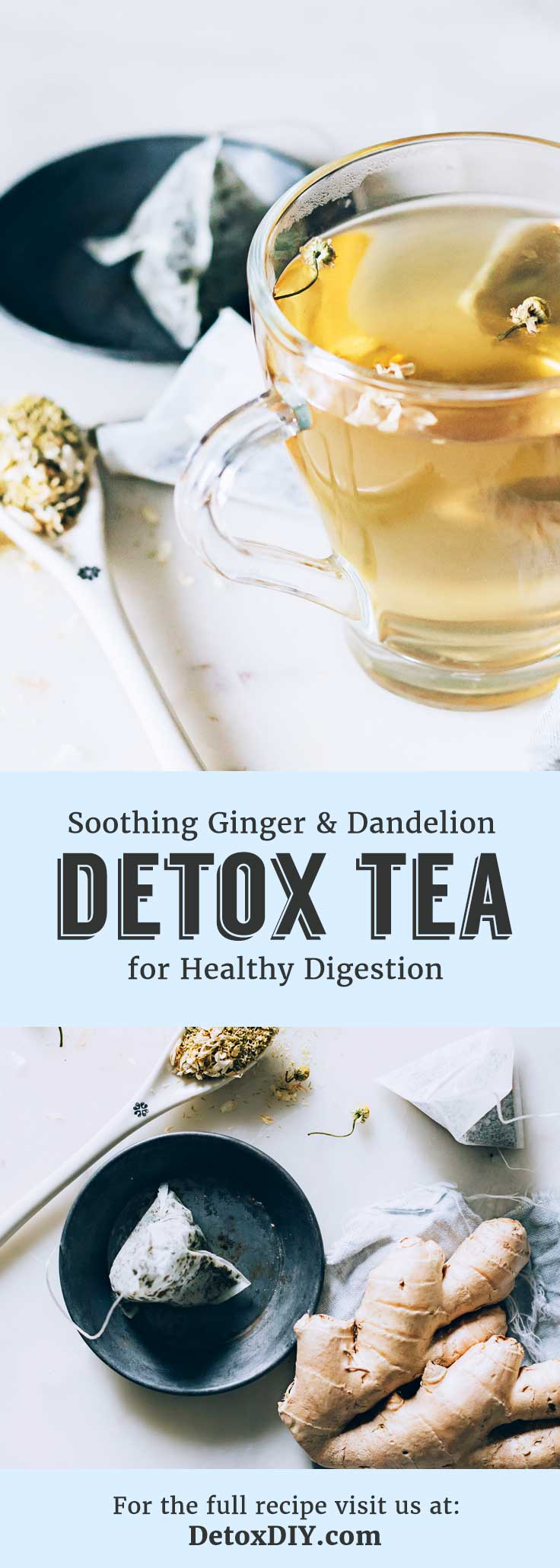 This soothing singer and dandelion tea will aid in healthy digestion and soothe an upset stomach.